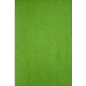 Cadeaupapier 50 cm x 100 meter Lime
